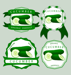 the theme cucumber vector image vector image