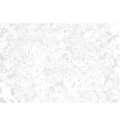 White plaster on grey background vector