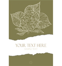 Flower on torn paper vector image