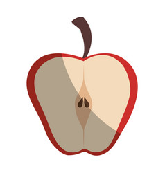 apple cut in half vector image