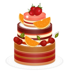 chocolate berry cake vector image