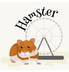 Domestic animal hamster isolated vector