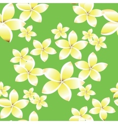 Seamless pattern with frangipani flowers vector image