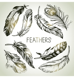 Feather sketch set hand drawn vector