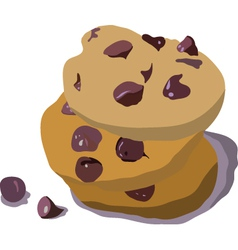 Chocolate cookies vector