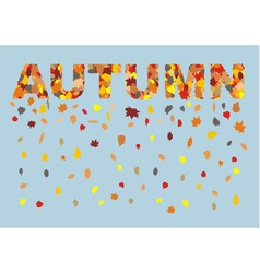 Autumn colored leaves in spring title vector image