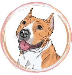 sketch smiling dog American Staffordshire vector image