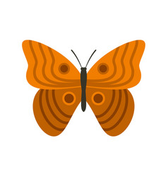 Butterfly with ornament icon flat style vector