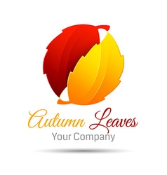 Autumn abstract background Bright leaves Logo vector image
