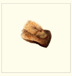 Fur hat vector