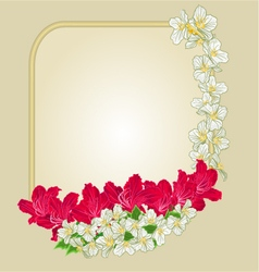 Frame with red rhododendron and jasmine vector