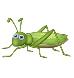 Grasshoppher cartoon vector