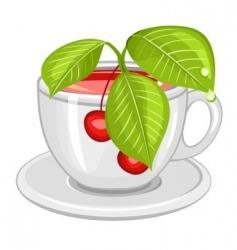 cup of cherry tea vector image vector image