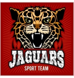 Sport team - jaguar wild cat panther vector