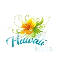 Aloha Hawaii  hibiscus grunge vector image