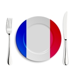 Plate with flag of france vector