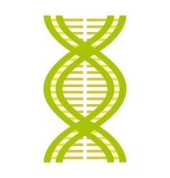 Nice dna and molecule icon vector