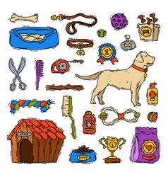 cartoon dog accessory grooming canine animal pet vector image