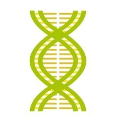 Nice DNA and molecule icon vector image vector image