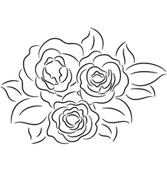 Rose contour vector image vector image
