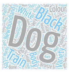 Newfoundland the aristocrat among dogs text vector