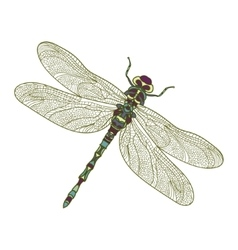 Mosaic stylized dragonfly vector