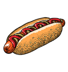Cartoon image of hotdog vector