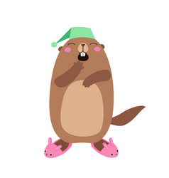 groundhog in bunny slippers flat vector image