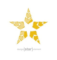 Luxury golden star with arrows on white background vector