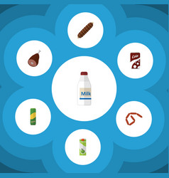 Flat icon meal set of bottle fizzy drink vector