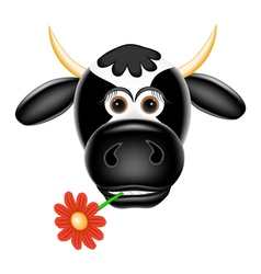 Funny cow with a flower in teeth vector image