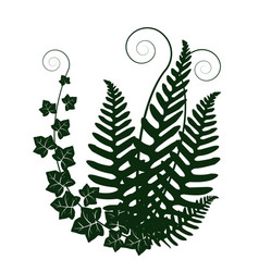 forest plants vector image