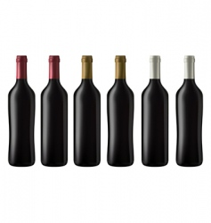 Red wine bottles vector