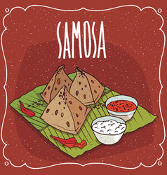 Indian snack samosa with sauce and curd cheese vector