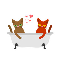 Cat lovers in bath lover joint bathing pet vector