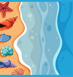 Background scene with seashells on beach vector