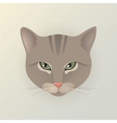 Portrait of a lady cat vector