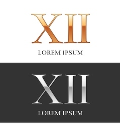 12 xii luxury gold and silver roman numerals vector
