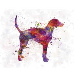 American foxhound in watercolor vector