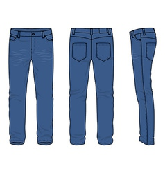 Mens jeans vector