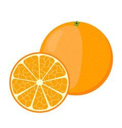 orange in cartoon style fresh ripe exotic fruit vector image