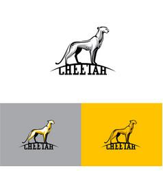 Logo cheetah eps10 vector