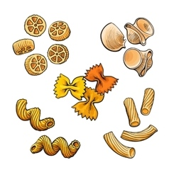 Big collection of italian pasta sketch style vector image vector image