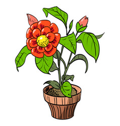 Cartoon image of house plant vector