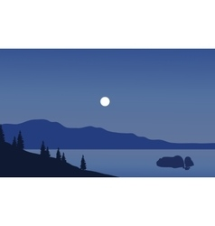 Landscape of beach at night vector image