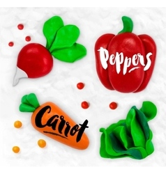 Plasticine vegetables carrot vector image
