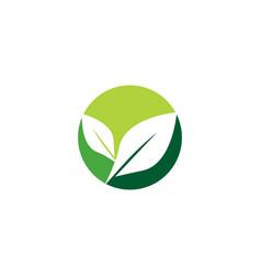 tree leaf logo template vector image