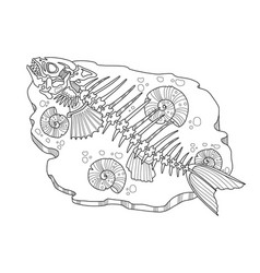 skeleton of fish coloring book vector image