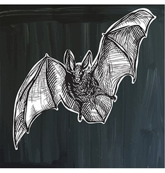 Bat - freehand sketching vector