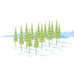 Cartoon Spruce Trees vector image vector image